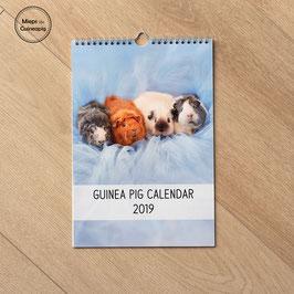 2019 Guinea Pig Calendar  (free shipping!)