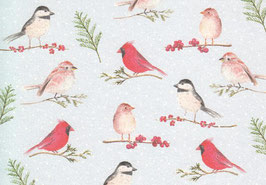 Postkarte Wintervögel