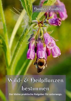 Wild- & Heilpflanzen bestimmen