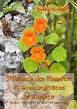 Pflanzen des Kräuter- & Gemüsegartens bestimmen
