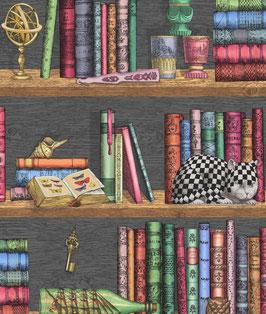 Libreria Fornasetti carta da parati doppio rollo