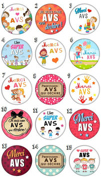 "Pin's ""AVS"""