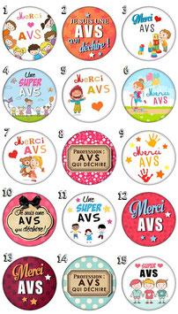 "Badge ""AVS"""