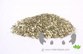 Echinacea Fijn