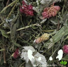 Flower Magix - Mix