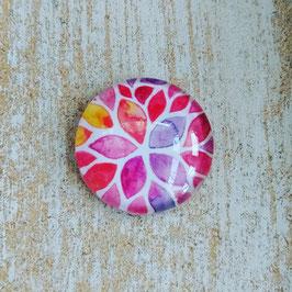 Blume regenbogenfarben