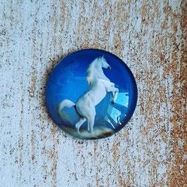 Pferd weiß stehend