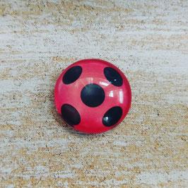 Marienkäfer (Ladybug)