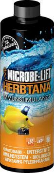 Microbe-Lift Herbtana - Immunstimulanz P - Meerwasser