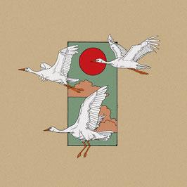 THE REBELS OF TIJUANA - ASILE (Double Album)