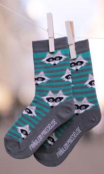 NEU Fräulein Prusselise BIO Socken Waschbär