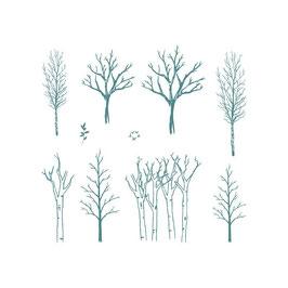 Sello Caucho árboles