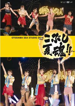 OTODAMA SEA STUDIO 2018 ~Kobushi Natsu Tamashii!!~
