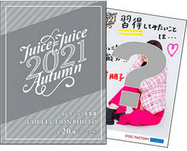 HERBST CLEAR FILES