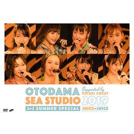 """OTODAMA SEA STUDIO 2019 unterstützt von Pocari SWEAT J = J Summer Special """"."""