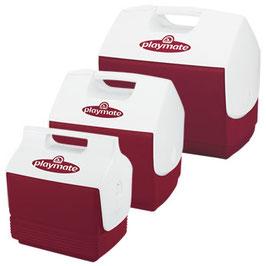 Eisbox IGLOO 'Playmate' Diabolo Red Alle Cooler sind einfach zu reinigen, geschmacks - und geruchsneutral. Kühlaggregat und Isolierung. FCKW - frei.