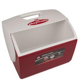 Große Betreuer-Eisbox ohne Füllung