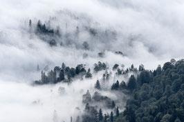 Smoky Mountains (Print & Digital)