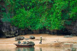 The Vietnamese Fisherman (Print & Digital)
