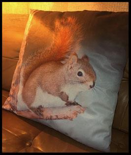 Waldeichhörnchen Kissen