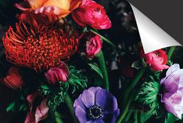 Feld-Bouquet-Induktionsschutz