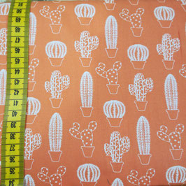 Baby - Cactus fondo arancione