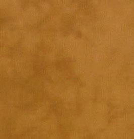Primitive muslin - 29 honey