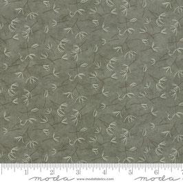 Prairie grass - soffioni fondo verde