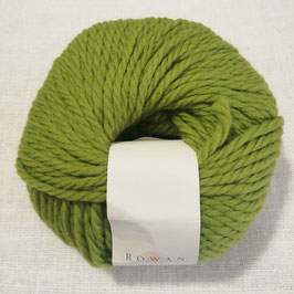 Rowan big wool - verde