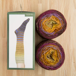 Uneek sock urth - Kit per calze a righe #59
