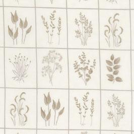 Prairie grass - riquadri fondo bianco disegno marrone