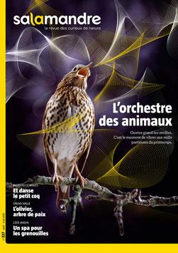 """Magazine """"Orchestre des animaux"""""""