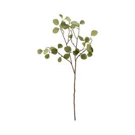 HOUSEDOCTOR künstlicher Eycalyptuszweig