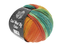 Cool Wool Big Color 100g