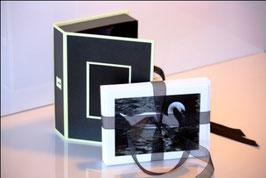 Cartes de souhaits sans texte emballage de 6 avec boîte cadeau