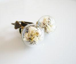 Ohrringe ♥ weiße Blüten ♥