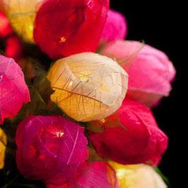 Rosenknospen (pink)