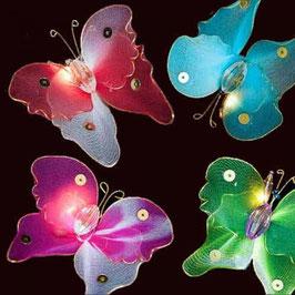 Schmetterlinge (Regenbogen)