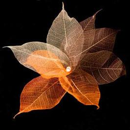 Blätterkette (braun)