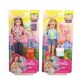 Barbie Explora y Descubre Surtido de Hermanas