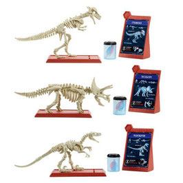 Jurassic World Surtido Esqueleto de Dinosaurios