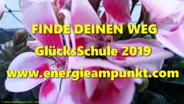 GlücksSchule 2019 FrühbucherPreis bis 30.10.2018