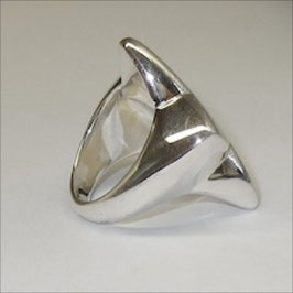 Stern Ring