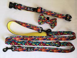 B-REX Set Halsband & Leine