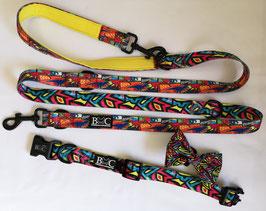 B-WILD Set Halsband & Leine