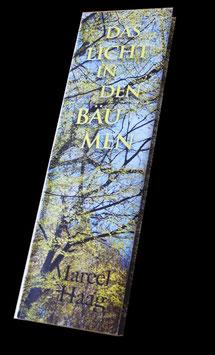 BUCH - DAS LICHT IN DEN BÄUMEN - Fotografie & Poesie