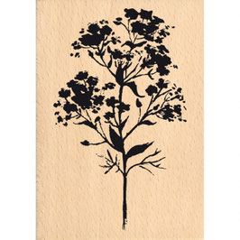 Tampon bois Grande fleur sauvage_FD