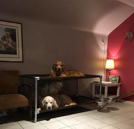 Lit  Superposé pour chien de taille Large 1670 mm x 680 mm  H 540 mm ( hauteur modifiable)