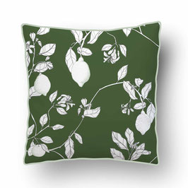 CUSHION with PIPED EDGES citronnade blanc/vert