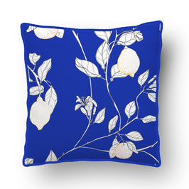 CUSHION with PIPED EDGES citronnade blanc/bleu